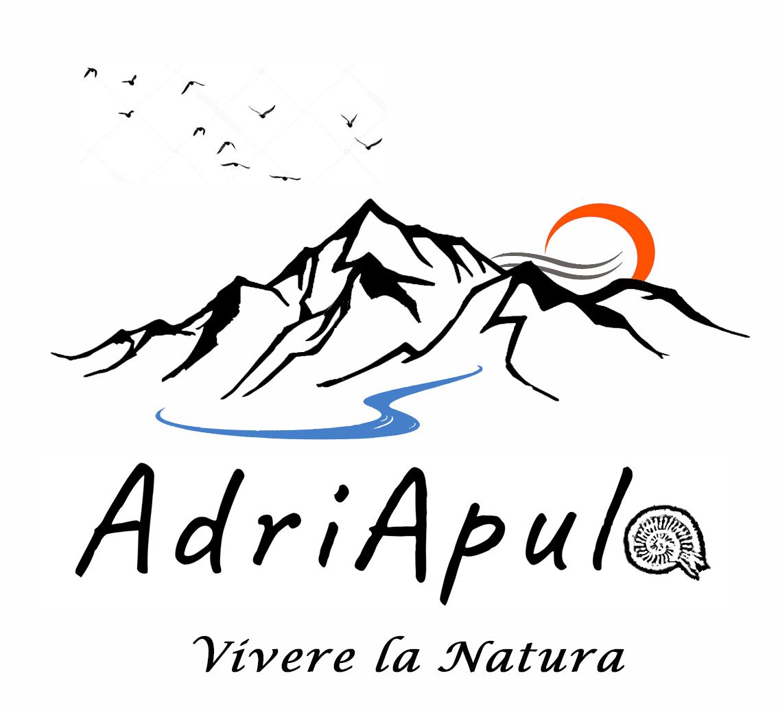 AdriApula